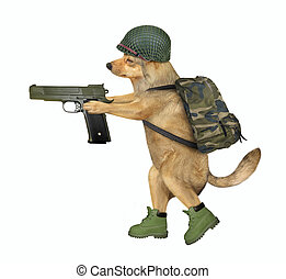 Dog soldier holds a gun 2