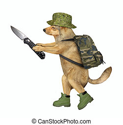 Dog soldier holds a jackknife