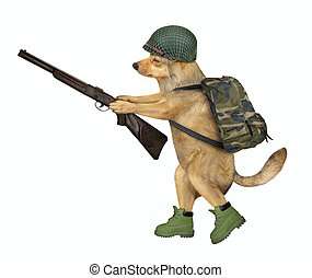 Dog soldier holds a rifle