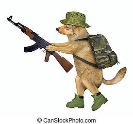 Dog soldier holds machine gun
