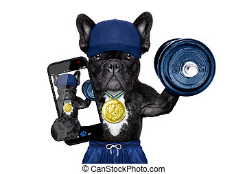 dog as gym and personal trainer with gold medal making a selfie as a poser lifting a dumbbell