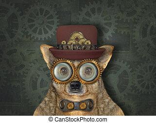 Dog steampunk in hat 3