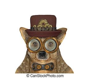 Dog steampunk in hat