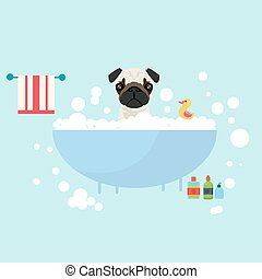 dog take a bath wet grooming with soap shampoo bubbles animal lover