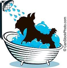 Dog taking a bath animal care