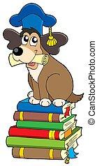 Dog teacher on pile of books