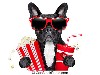 dog to the movies - dog going to the movies with soda and...