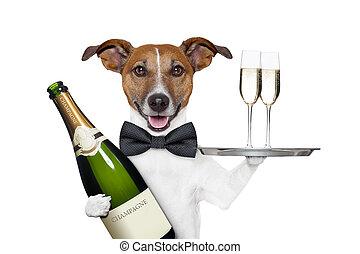 dog toasting new years eve