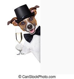 dog toasting with champagne glass behind  a white placard