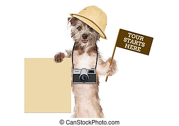 Dog Tour Guide Blank Sign - A cute dog safari guide with a...