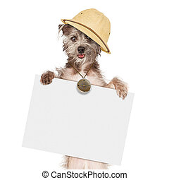 Dog Tour Guide With Sign