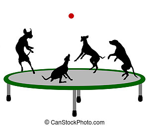 Dog trampoline