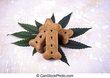 Dog treat and cannabis leaves - medical marijuana for pets...