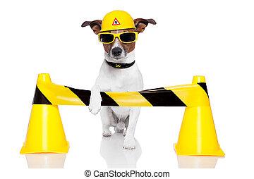 dog under construction