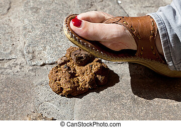 Dog waste - A foot occurs dog droppings, lying on the street...