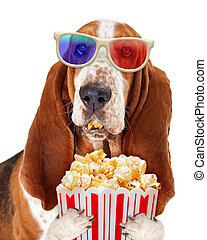 Dog Watching Movie With Popcorn