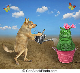 Dog watering cactus in metal pot 2