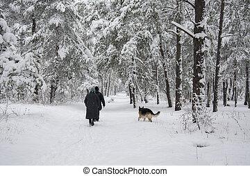 dog., winter, gefolgt, leute, forsten pfad, schneebedeckt, entlang