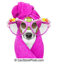 dog with a beauty mask wellness spa