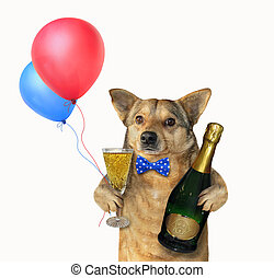 Dog with a champagne glass 3