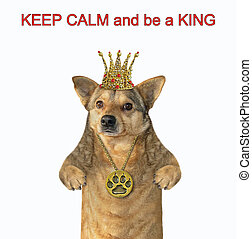 Dog with a crown and a locket - The dog is wearing a crown...