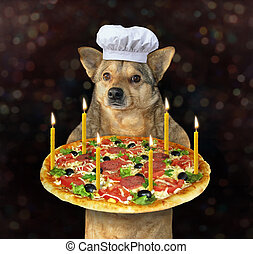 Dog with a holiday pizza