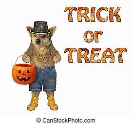 Dog with a pumpkin basket 2