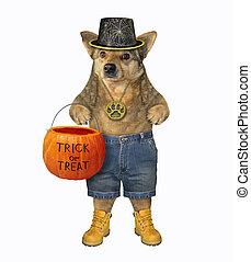 Dog with a pumpkin basket