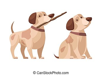 Dog with a stick in his teeth and without. Color vector cartoon icon