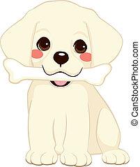 Dog With Bone - Cute dog puppy labrador holding big bone...