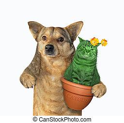 Dog with cat cactus
