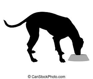 Dog with feeding dish