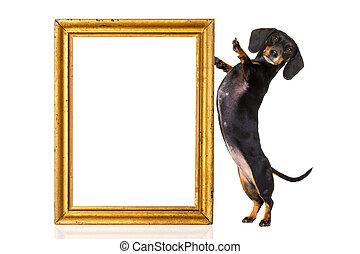 dog with golden frame