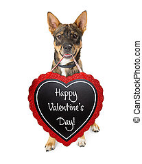 Dog With Happy Valentines Day Sign