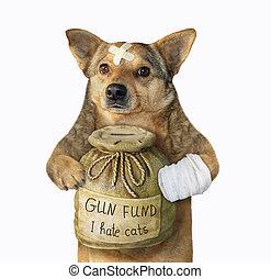 Dog with money box for gun fund