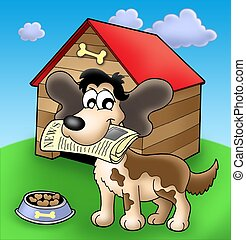 Dog with news in front of kennel