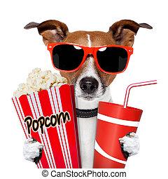 cinema dog watching tv