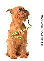 Dog with Saxophone