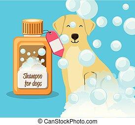 dog with shampoo bottle
