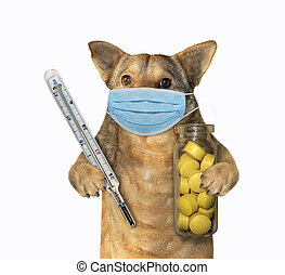 Dog with thermometer and pills