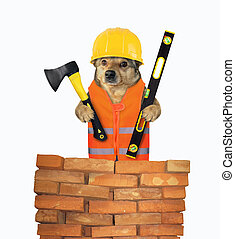 Dog worker holds ax and level 2