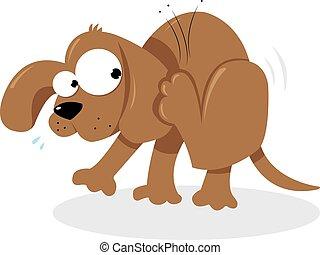 Doggie and Fleas - a cute dog with fleas