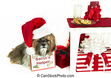 """A Shih Tzu wearing a Santa hat and """"Santa's Helper"""" sign sits by cookies and milk for Santa."""