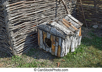 Doghouse birch near woven fence