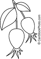Dogrose berry bunch icon, outline style