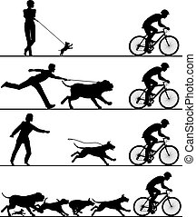Dogs and cyclist - Four editable vector silhouettes of dogs...