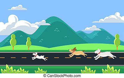 dogs are running on the road in the morning