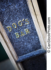 Dog's bar in the city