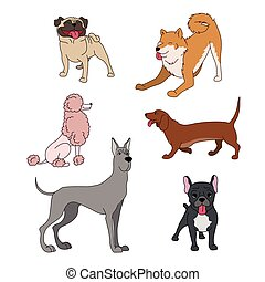 Dogs breeds cartoon set great dane, french bulldog, poodle,...