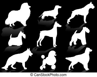 Dogs breeds silhouette - Dogs silhouette to represent...